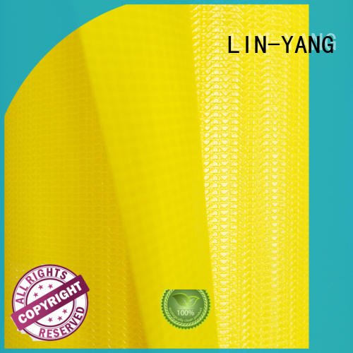 LIN-YANG Brand coated antistripping membrane structure building tensile supplier