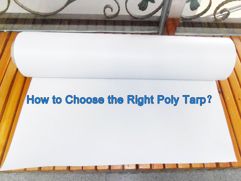 LIN-YANG-How to Choose the Right Poly Tarp