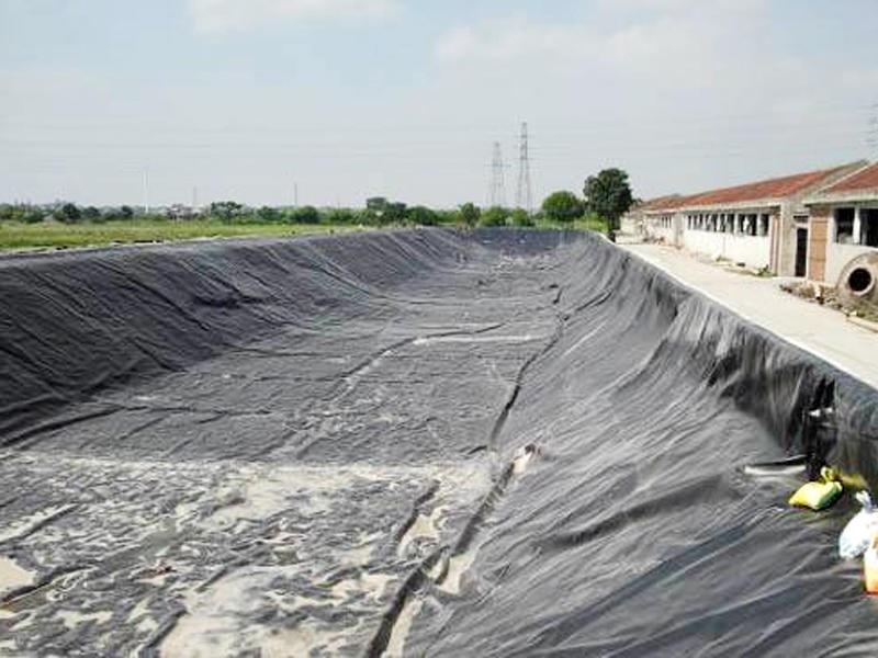 Impermeable PVC Tarpaulin for Agricultural Drainage and General Cover application